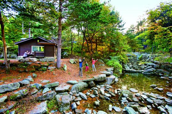 9월은 숲에서 놀기 좋은 계절이다. 휴양림에 가면 놀거리가 많다. 사진은 전국 국립 자연 휴양림 중 예약 경쟁률이 가장 치열한 유명산 숲속의 집.