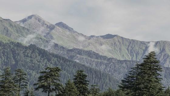 인도의 스위스로 통하는 마날리. 히말라야 산맥 고봉에 둘려 시원한 여름을 보낼 수 있는 여행지다.