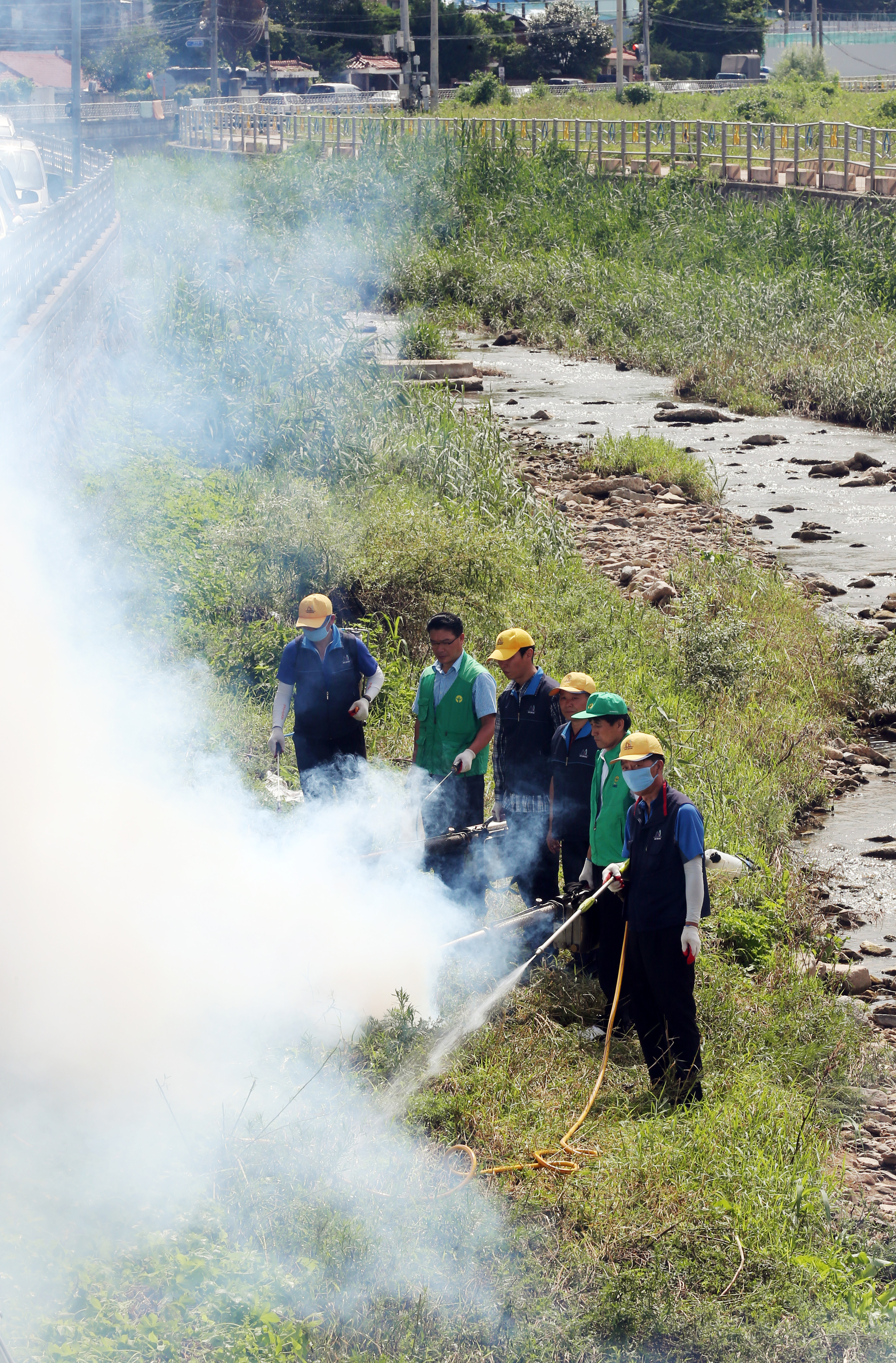 일본뇌염을 예방하기 위해서 모기 방역 활동을 펼치고 있는 공무원들. [중앙포토]