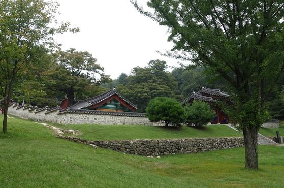 자운서원은 1615년 창건해 율곡과 제자인 김장생·박세채를 모셨는데 1868년 서원철폐령으로 없어졌다가 1969년부터 여러 차례 복원했다. 서원 안의 느티나무 노거수는 수령이 각각 431년과 452년이다. 창건하던 해 29년·50년생을 심은 셈이다. 유적지는 공사 중인데 10월 1일 다시 열 예정이다.