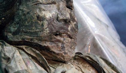 국내 연구팀이 질병 유전자 분석을 통해 17세기 조선시대 미라의 사망원인을 밝혀내는 데 성공했다. 사진은 2010년 경북 문경에서 발견된 조선시대 여성 미라의 모습. [사진 플로스원 논문 발췌]