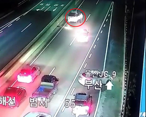 만취해 고속도로 역주행한 트럭 운전자의 모습이 찍힌 CCTV 화면. [사진 부산경찰청]