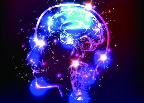 뇌가 몸의 주인이라고 말하기엔 뭔가 석연치 않다. [중앙포토]