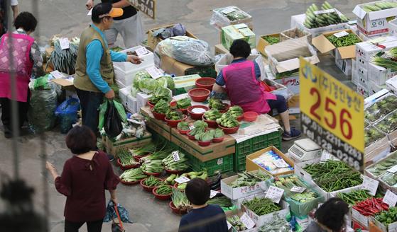 8월 폭염과 폭우로 채소값이 전달에 비해 14.2% 급등했다. 지난달 29일 인천시 삼산농산물도매시장에서 소비자들이 채소를 사고 있는 모습. [연합뉴스]