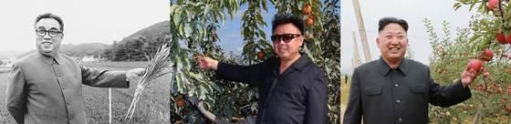 김일성과 김정일·김정은 3부자는 과일, 벼 등을 통해 이미지 연출을 시도했다.[통일문화연구소]