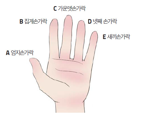 손가락 으로 알아보는 심리