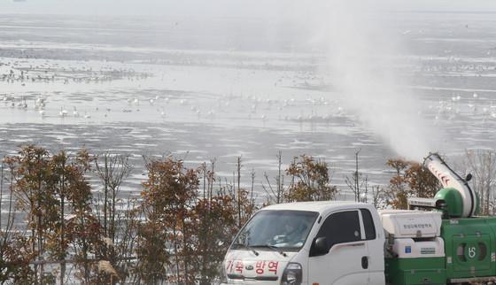 2014년 1월 부산 을숙도에서 수거된 철새 분변에서 조류인플루엔자(AI) 양성반응이 나오자 부산시 보건환경연구원 직원들이 차량으로 방역작업을 벌이고 있다. [중앙포토]