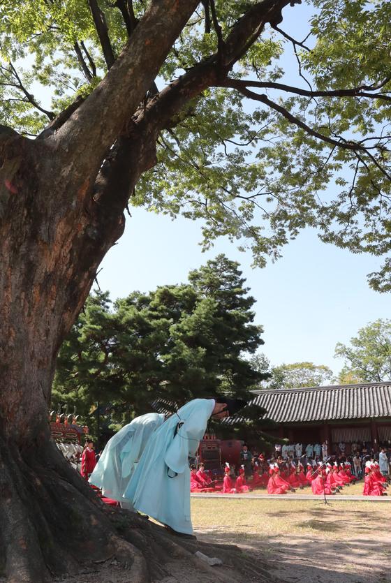 700년 수령의 느티나무 아래서 인사를 하는 유생들.
