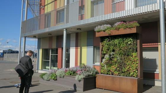 아노그린이 초등학교에 설치한 그린월. 빗물이 책장모양의 구조물을 타고 내려오도록 설계돼있다. [사진 정경민 기자]
