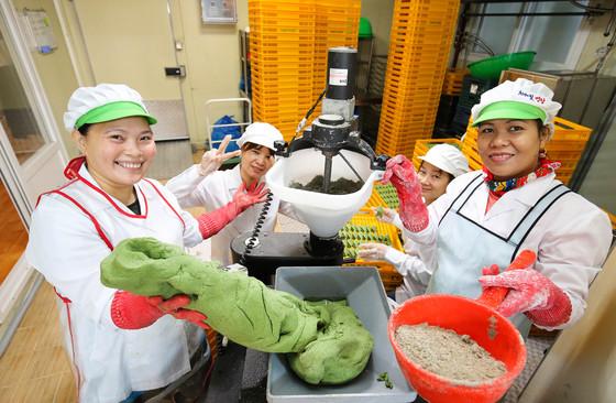 지난달 24일 전남 영광군 영광읍 신하리 솔담모싯잎송편 공장에서 필리핀과 베트남 출신 이주여성들이 송편을 빚고 있다. 프리랜서 장정필