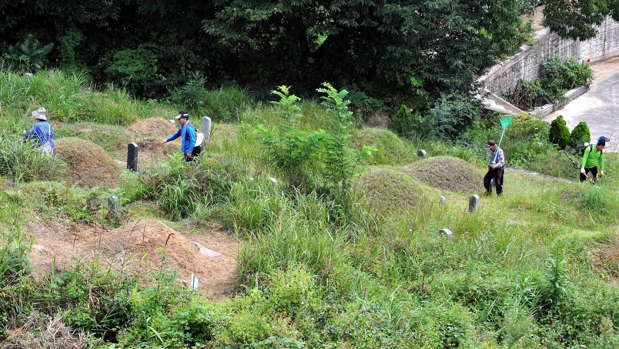 대전시립공원묘지에 성묘를 온 시민들이 벌초하기 위해 예초 기기와 낫 등을 들고 이동하고 있다. 이처럼 수풀이 많은 곳에선 진드기에 물리지 않도록 주의해야 한다. [중앙포토]