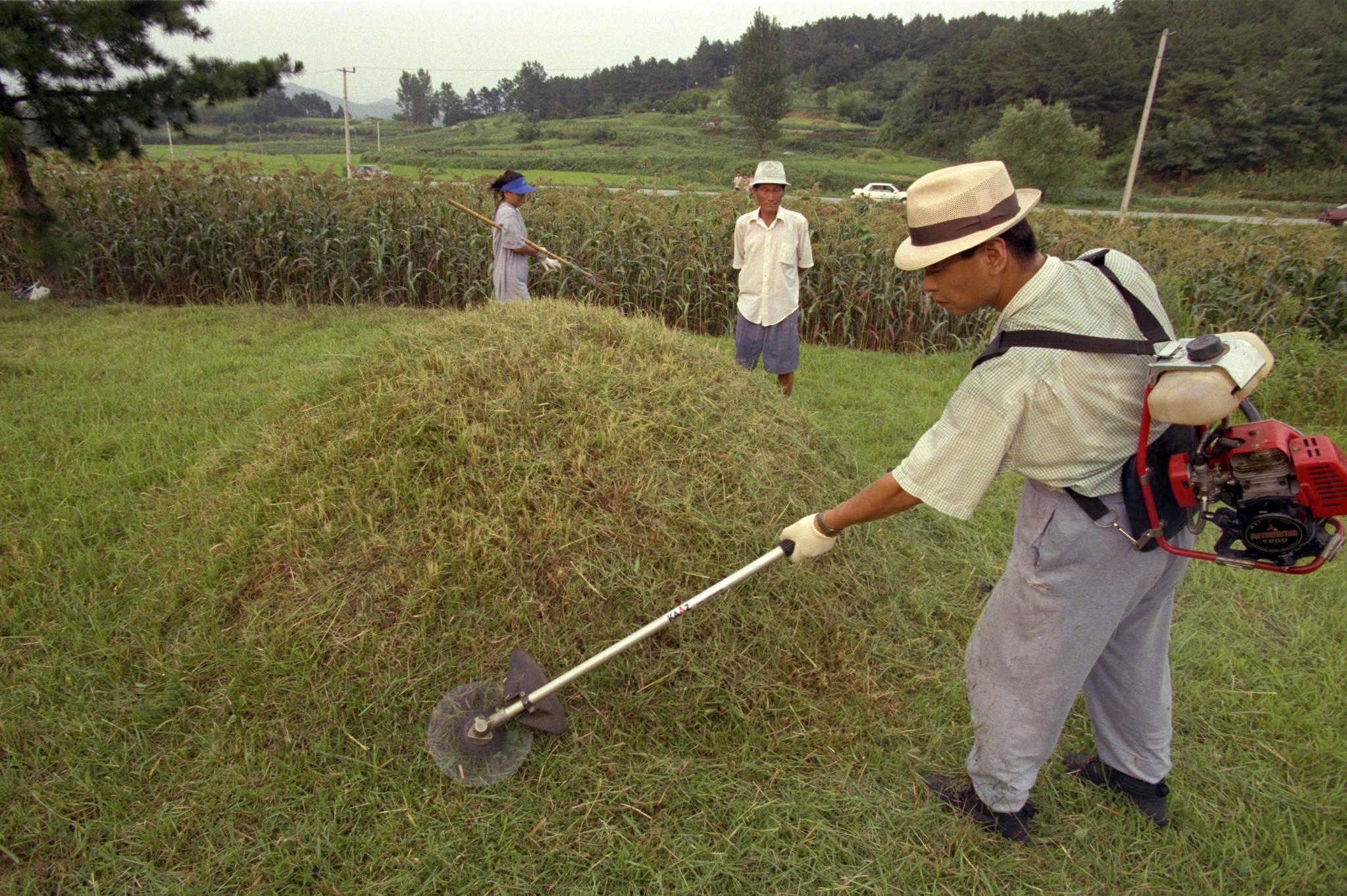 1995년 추석(9월9일)을 앞둔 8월 23일 한 노인이 벌초기계를 메고 벌초를 하고 있다. 당시 이러한 예초기는 귀했다.[중앙포토]