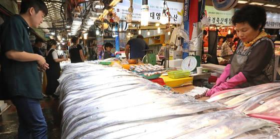 지난 8월 28일 제주시 동문시장을 찾은 시민이 갈치를 고르고 있다. 제주도는 최근 연근해 어장의 수온 상승 등으로 갈치 어획량이 크게 늘었다. 가격은 40% 가량 떨어졌다. [연합뉴스]