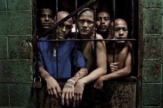감옥에 수감돼 있는 엘살바도르 조직 범죄원들. [뉴욕타임스]