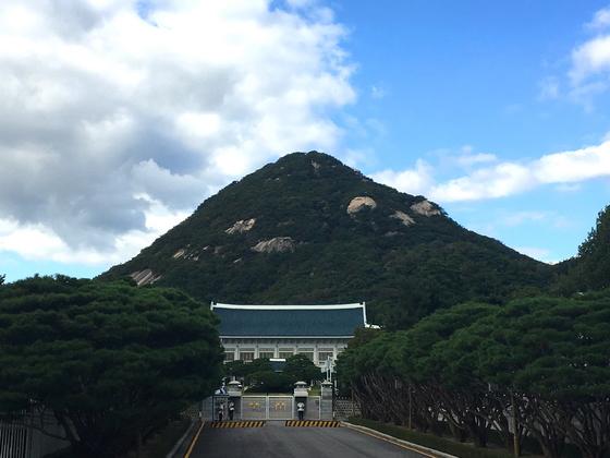 청와대 본관을 품은 북악산. [사진 하만윤]