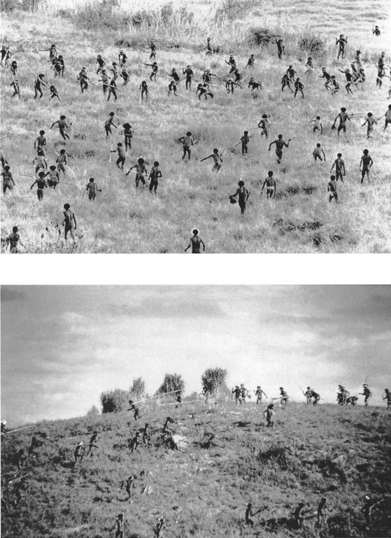 뉴기니 섬 부족들의 전투 장면(1960년대 초). '원시 전쟁'의 전형적인 패턴을 보여준다. [사진 교유서가]