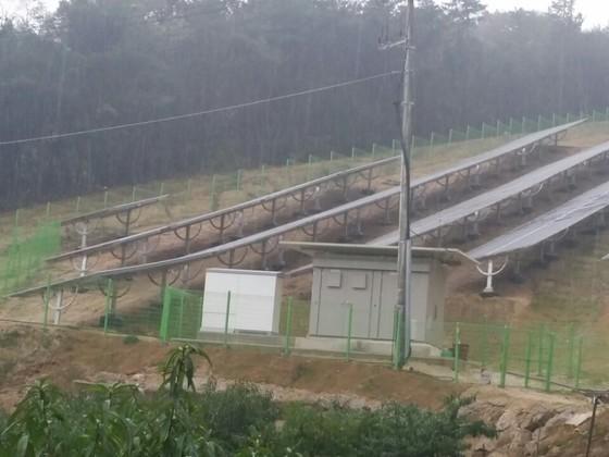 묘지가 있던 경북 김천시 남면 운곡리 야산에 설치된 태양광 시설. 후손이 신고했다. [연합뉴스]