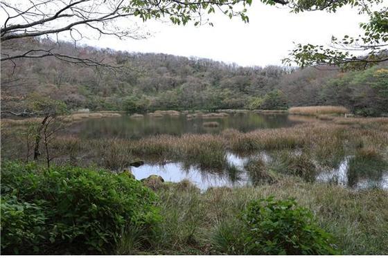 2009년 습지보호지역으로 지정된 제주도의 물장오리오름 습지. [사진 국립환경과학원]