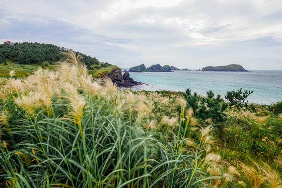 해안절벽 생이기정에서 바라본 제주 바다. 파도가 용암 절벽에 부딪히는 소리 풍경을 즐길 수 있는 장소다. [사진 제주관광공사]