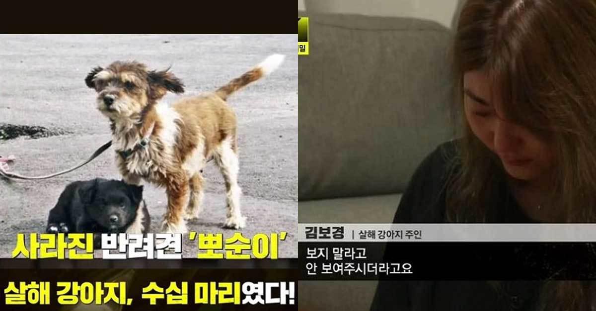 [사진 JTBC '이규연의 스포트라이트' 방송화면 캡처]