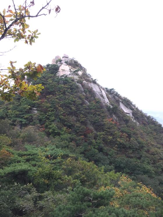 백운동 암문에서 용암문으로 가는 길에 만난 노적봉. 산은 이미 가을로 물들기 시작했다. [사진 하만윤]