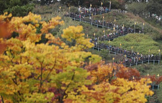 완연한 가을 날씨를 보인 지난 22일 오전 서울 마포구 월드컵공원 내 하늘공원으로 가기 위해 시민들이 계단을 오르고 있다. [연합뉴스]