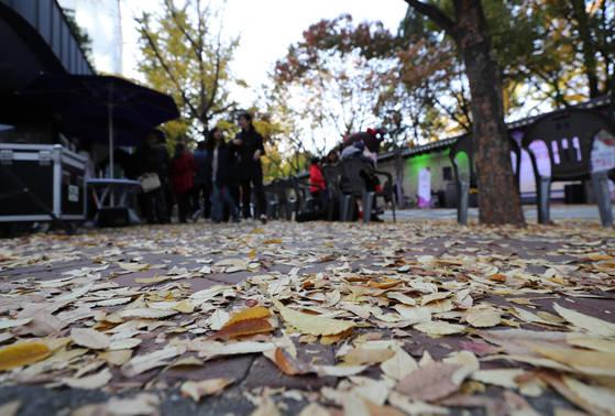 29일 오후 서울 중구 정동길에 낙엽이 쌓여있다. 기상청은 29일 낮부터 찬바람이 강해지며 본격적인 추위가 시작돼 월요일에는 서울의 아침기온이 3도 안팎까지 떨어진다고 예보했다. [연합뉴스]
