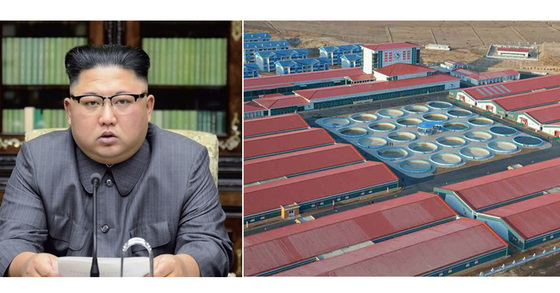 김정은 북한 노동당 위원장(좌)과 북한 삼천메기공장(우) [연합뉴스, 노동신문]