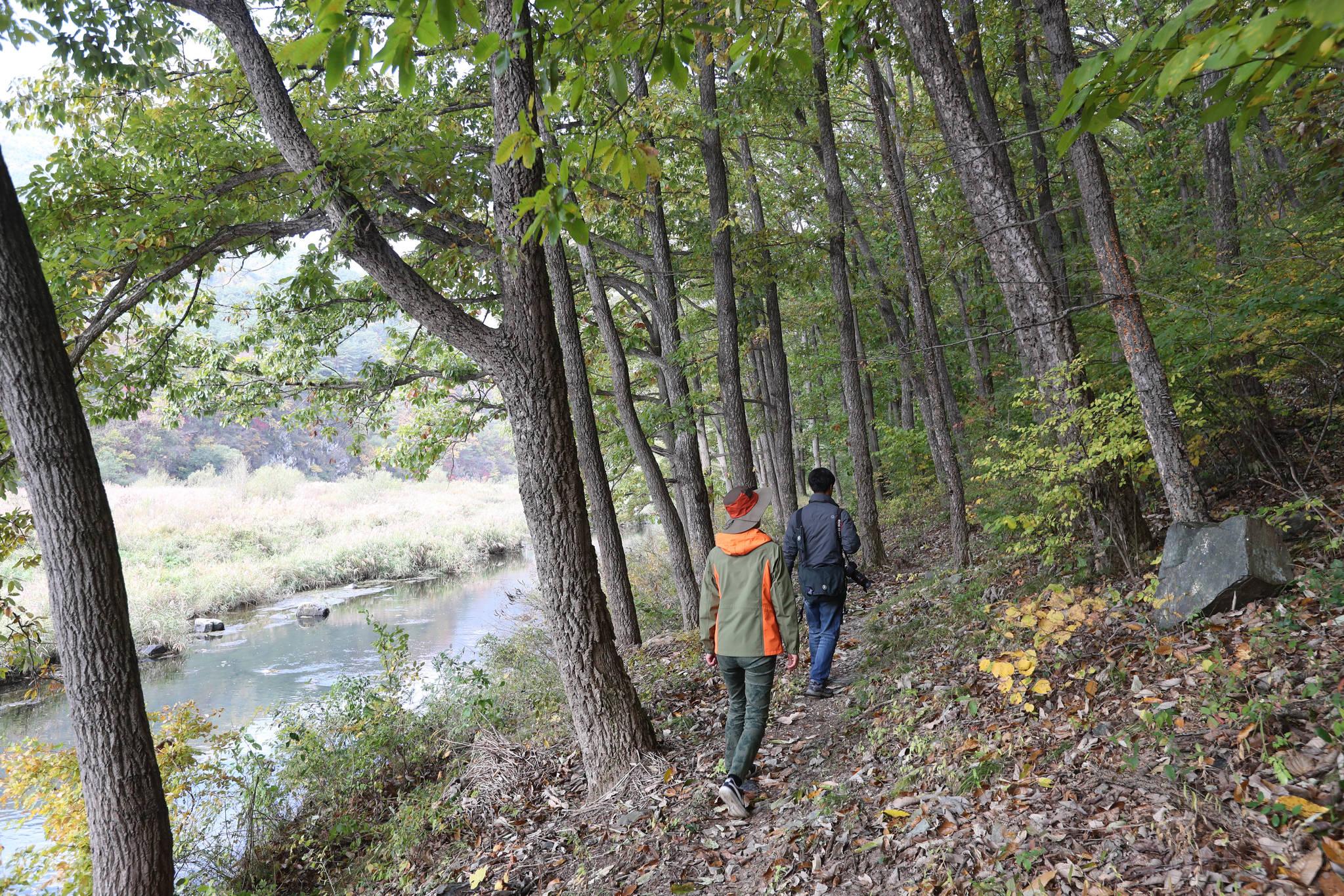 신성계곡의 지질명소를 보는 녹색길을 걷다 보면 호젓한 숲길도 만난다. 신인섭 기자