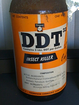 DDT [사진 Venggage]