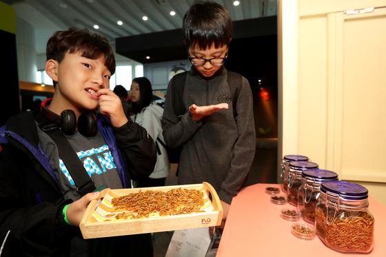 '곤충 고소애는 더 고소해!!'를 찾은 관람객들이 식용곤충을 시식하고 있다. 장진영 기자