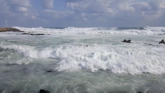 해안에 포말을 일으키며 부서지는 하얀 겨울파도. [사진 박동훈]