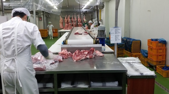 백돼지 고기를 흑돼지 고기로 둔갑시켜 판매한 업체의 발골작업 모습. [사진 경기도]