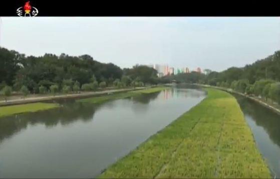 조선중앙TV는 지난달 28일 생태환경개선에 효과적인 '띄우기식 수상재배기술'을 발명한 김일성종합대학 생명과학부를 소개했다. [사진 조선중앙TV캡처]