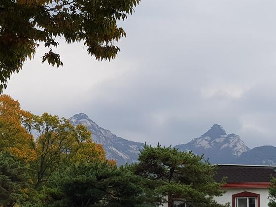 북한산 전원 단독주택에도 가을이 왔다.