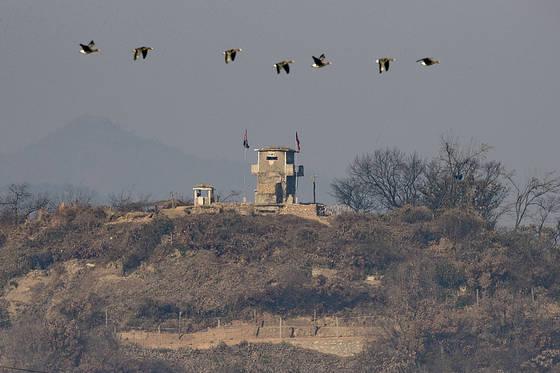 미국이 북한을 9년 만에 테러지원국으로 재지정한 가운데 21일 경기도 파주시 접경지역에서 철새가 북한 초소 위를 날고 있다. [연합뉴스]
