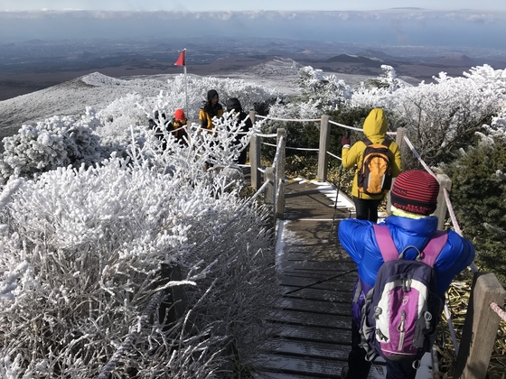 지난 19일 오후 제주도 한라산 영실코스를 찾은 등반객들이 나무 위에 내려 앉은 눈꽃을 바라보며 초겨울 산행을 만끽하고 있다. [최충일 기자]