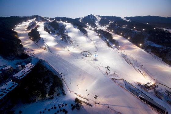 멀어서 부담스럽던 강원도 스키장이 올겨울에는 부쩍 가까워졌다. 평창 겨울올림픽을 앞두고 KTX가 개통해 서울에서 평창까지 1시간 안에 갈 수 있다. 사진은 올림픽 9개 종목이 개최되는 휘닉스 스노우파크. [사진 각 리조트]
