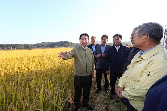김영록 농식품부 장관이 지난 10월 강원도 양양에서 수확기 쌀 수급 관련 현장점검을 진행하고 있다 [자료 농림축산식품부]