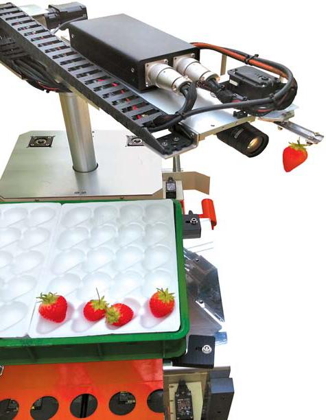 노동 시간을 줄일 수 있는 '딸기 수확로봇'.