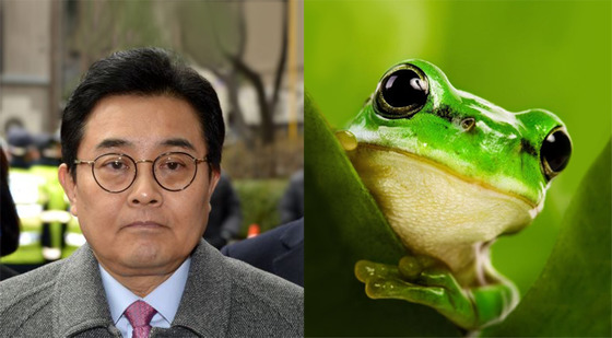 전병헌 전 정무수석은 청개구리 관상.