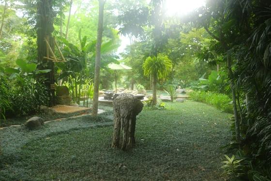 아침마다 안개가 자욱하게 낀다. 텐티드 캠프 수영장으로 가는 길.