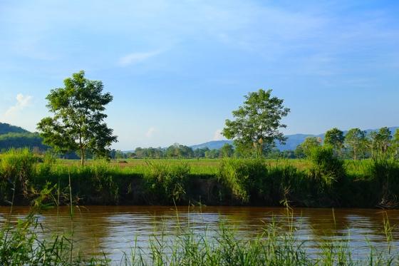악명 높은 마약 생산지에서 인기 있는 여행지로 변신한 골든트라이앵글. 태국, 미얀마, 라오스가 국경을 맞댄 지역이다.