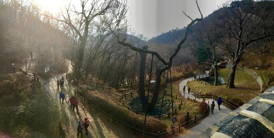 남문에서 바라본 성 밖 풍경. 수령 500년이 넘은 느티나무들이 역사의 관찰자로 서 있다. [사진 하만윤]