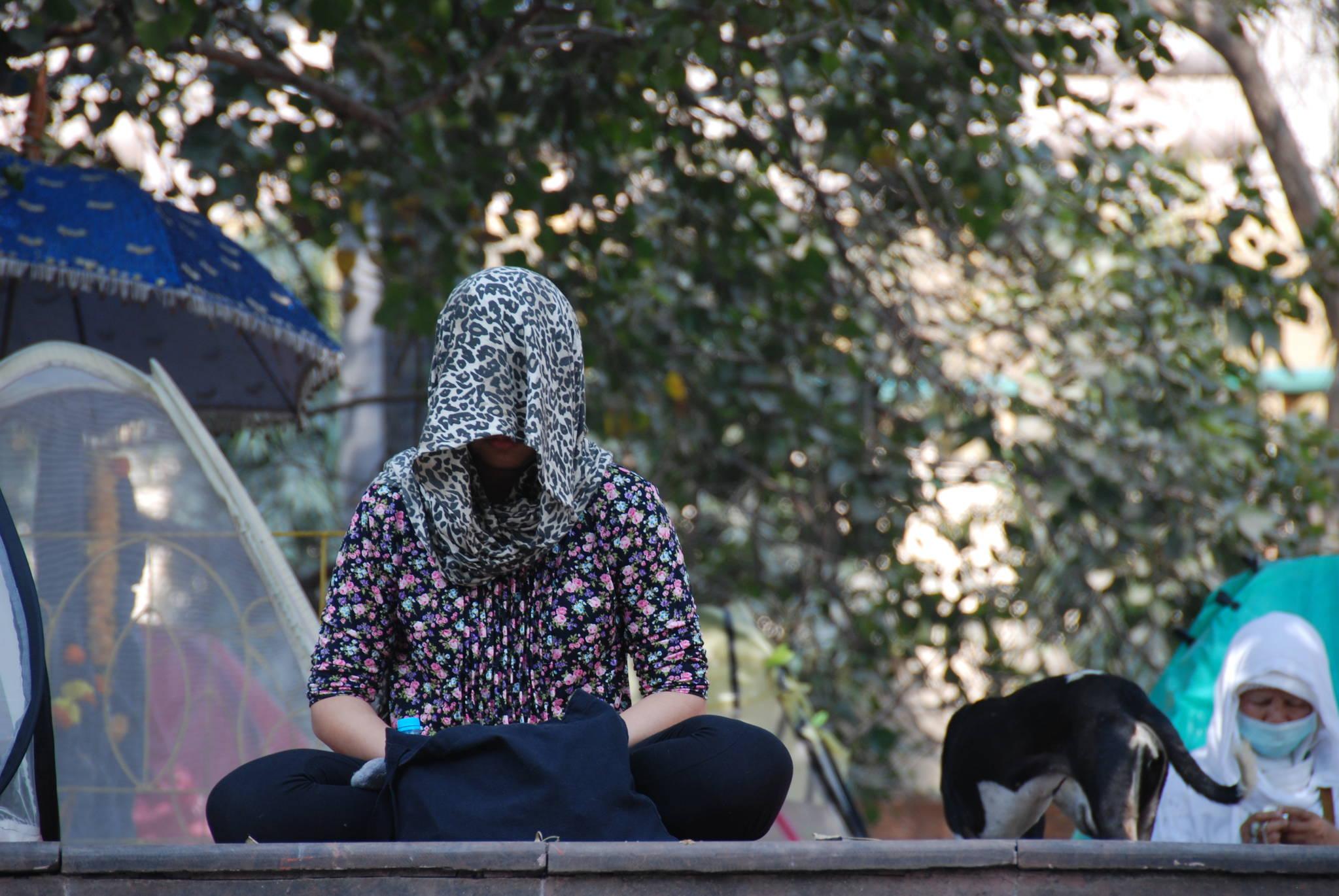 보드가야의 보리수 아래서 한 여성 순례객이 스카프를 둘러쓴 채 명상에 잠겨 있다.