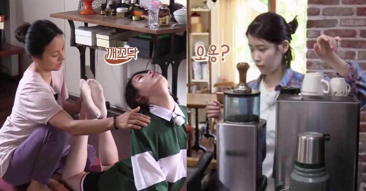 [사진 JTBC '효리네민박' 방송화면 캡처]