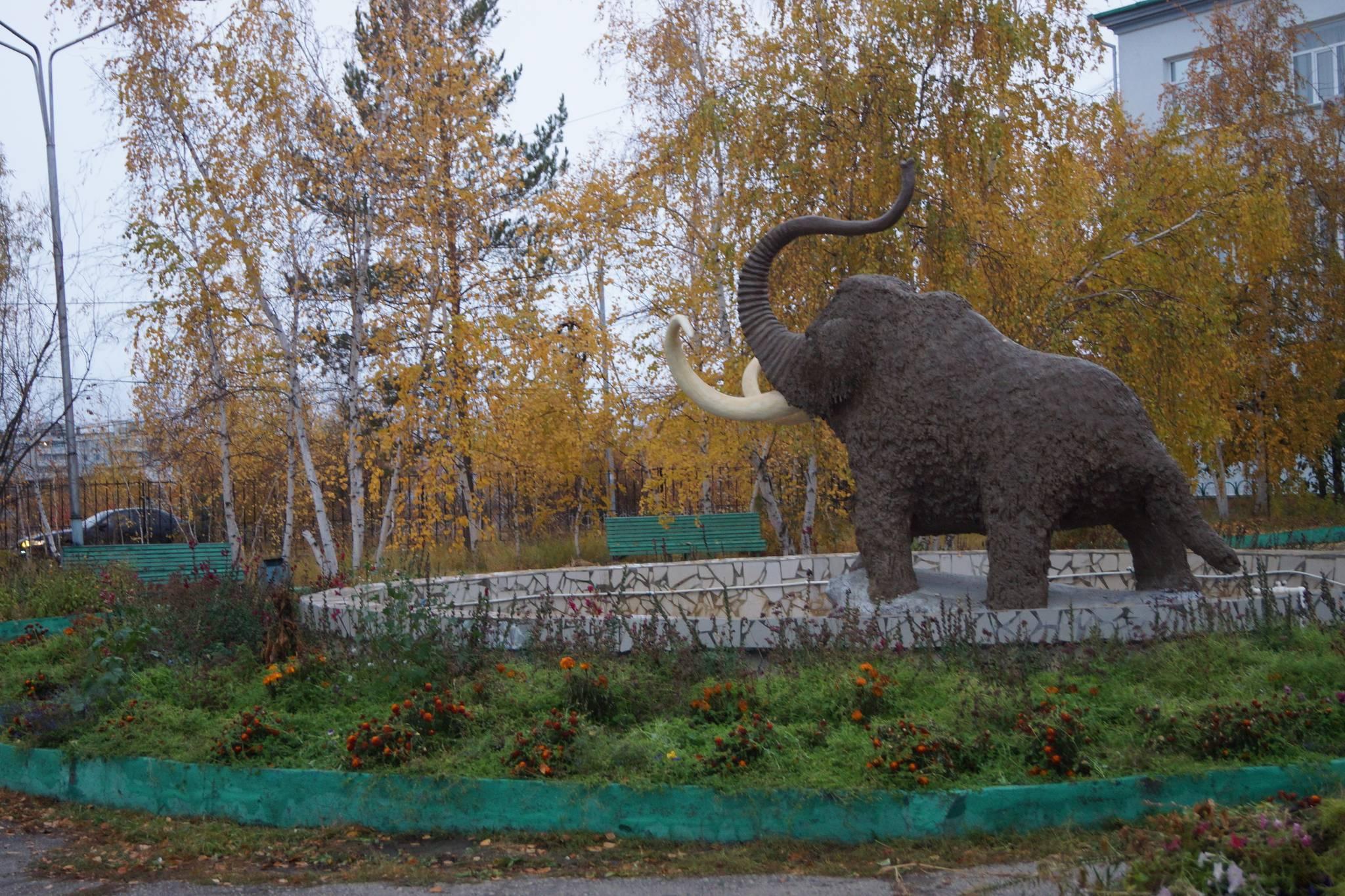 러시아 극동 사하공하국 야쿠츠크에 있는 영구동토박물관 앞뜰에 설치돼 있는 매머드 모형. 강찬수 기자