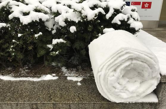 전국적으로 많은 눈이 내린 10일 서울 중구 시청역 인근 한 건물 앞 화단에 누군가 눈을 돌돌 말아 놓았다. 김성룡 기자