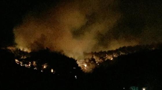 12일 오후 울산시 북구 시례동의 한 야산에서 불이 나 주변이 연기로 뒤덮여 있다. 소방당국과 북구 공무원들이 진화 작업을 벌이고 있다. [독자 제공=연합뉴스]