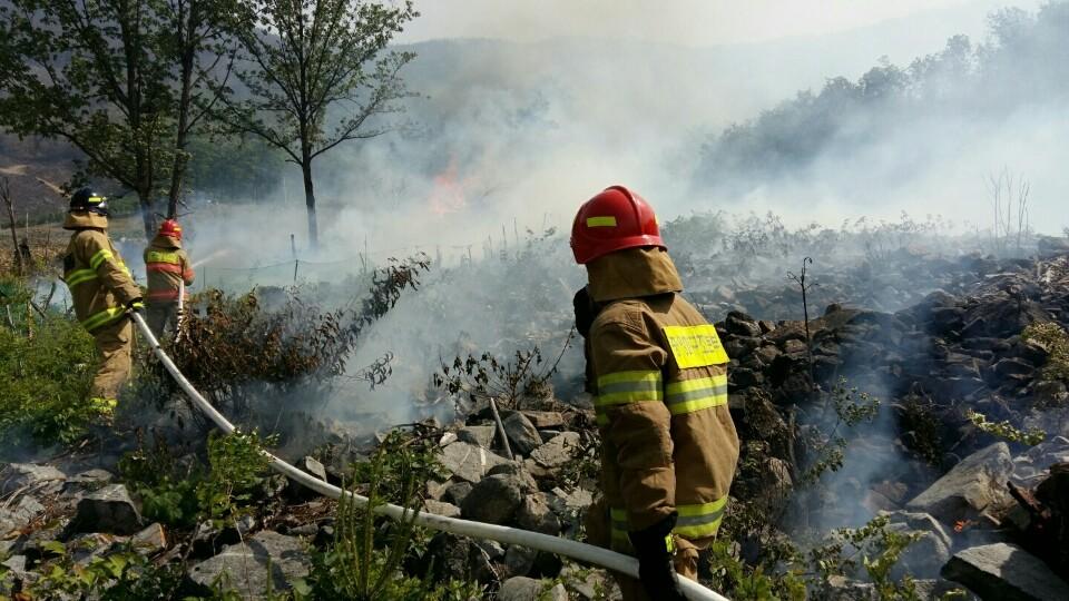 소방대원들이 삼척에서 발생한 산불을 진화하고 있다. (사진은 기사의 이해를 돕기 위한 것으로 내용과는 관련이 없습니다.) [사진 강원도 소방본부]